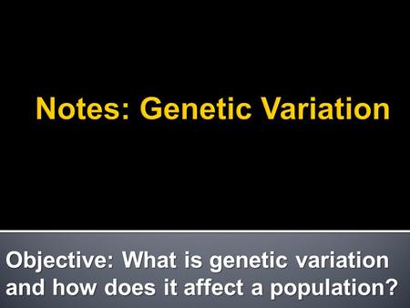 Objective: What is genetic variation and how does it affect a population?