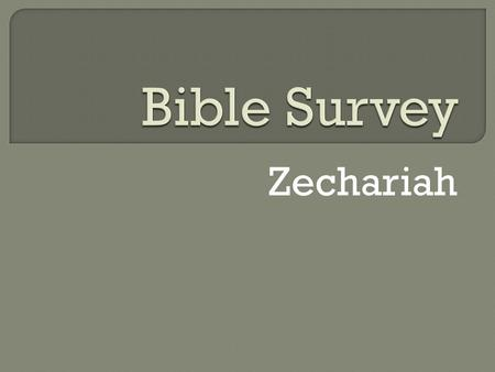 Bible Survey Zechariah.