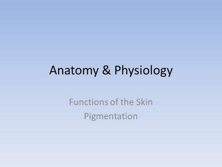 Anatomy & Physiology Functions of the Skin Pigmentation.