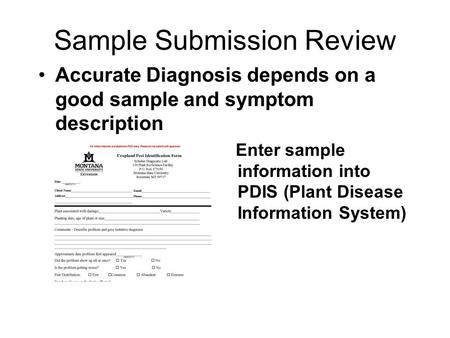 Sample Submission Review Accurate Diagnosis depends on a good sample and symptom description Enter sample information into PDIS (Plant Disease Information.
