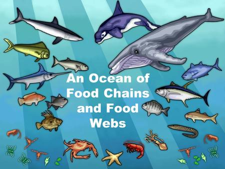 An Ocean of Food Chains and Food Webs. Food Chain large shark mahi mackerel small fish zooplankton phytoplankton Flow of Energy.
