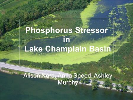 Phosphorus Stressor in Lake Champlain Basin Alison Nord, Anna Speed, Ashley Murphy.