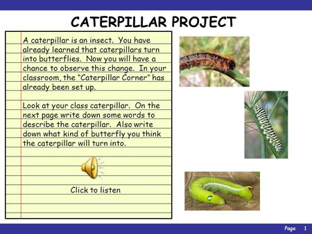 Page1 CATERPILLAR PROJECT A caterpillar is an insect. You have already learned that caterpillars turn into butterflies. Now you will have a chance to.