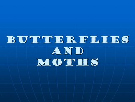 Butterflies and Moths. Butterflies' antennae Thin with a knob at the end.