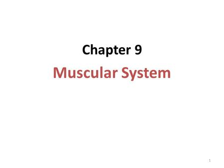 1 Chapter 9 Muscular System. 2 Introduction: A.All movements require muscle. B.The three types of muscle in the body are skeletal, smooth, and cardiac.