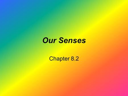 Our Senses Chapter 8.2. It is TRUE that when you look at a rainbow, the wavelength of light determines the colors you see –Red wavelength is longer than.