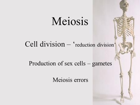 Meiosis Cell division – ' reduction division' Production of sex cells – gametes Meiosis errors.