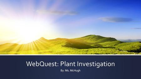WebQuest: Plant Investigation By: Ms. McHugh. Introduction ▪ Imagine you are a plant scientist. Imagine your teacher and the rest of your classmates are.