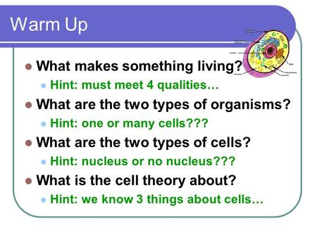 Warm Up What makes something living? Hint: must meet 4 qualities… What are the two types of organisms? Hint: one or many cells??? What are the two types.