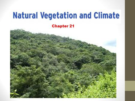 Chapter 21. 2 details to learn: What is natural vegetation? What are deciduous trees?