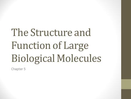 The Structure and Function of Large Biological Molecules Chapter 5.