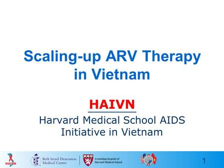 1 Scaling-up ARV Therapy in Vietnam HAIVN Harvard Medical School AIDS Initiative in Vietnam.
