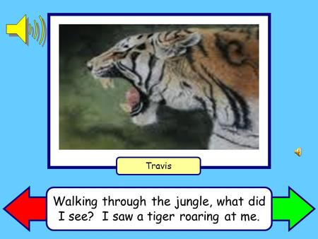 Walking through the jungle, what did I see? I saw a tiger roaring at me. Travis.