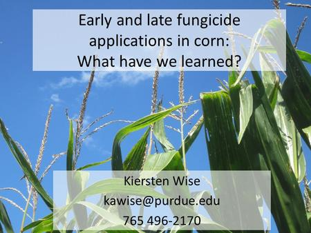 Early and late fungicide applications in corn: What have we learned? Kiersten Wise 765 496-2170.
