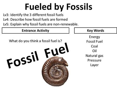 Fueled by Fossils Lv3: Identify the 3 different fossil fuels Lv4: Describe how fossil fuels are formed Lv5: Explain why fossil fuels are non-renewable.