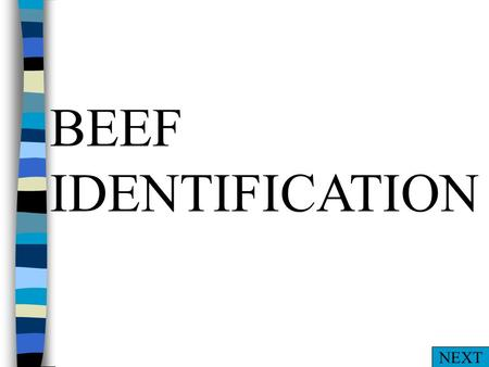 BEEF IDENTIFICATION NEXT A. Muzzle B. Hock C. Dewclaw D. Foot BACD PARTS NEXT.