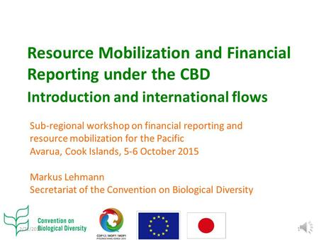 Resource Mobilization and Financial Reporting under the CBD Introduction and international flows Sub-regional workshop on financial reporting and resource.