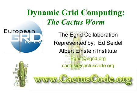 Dynamic Grid Computing: The Cactus Worm The Egrid Collaboration Represented by: Ed Seidel Albert Einstein Institute
