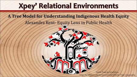 A Tree Model for Understanding Indigenous Health Equity Alexandra Kent- Equity Lens in Public Health Haida Tree by kireihiryu