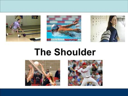 The Shoulder. Label the Shoulder  The shoulder is made up of three bones Humerus Scapula Clavicle  Humerus – upper arm bone  Scapula – shoulder blade.