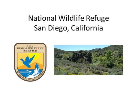 National Wildlife Refuge San Diego, California. About the Refuge.. Established in 1996 Stretches from Jamul to communities in Spring Valley Over 11,152.