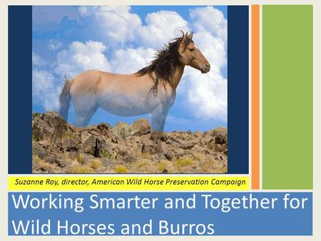 Working Smarter and Together for Wild Horses and Burros Suzanne Roy, director, American Wild Horse Preservation Campaign.
