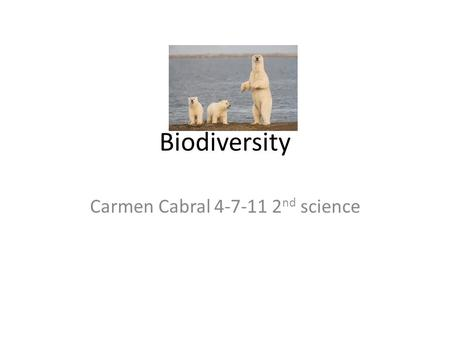 Biodiversity Carmen Cabral 4-7-11 2 nd science. Endangered species Polar bears 1. The polar bear is an endangered specie. The polar bear lives in the.