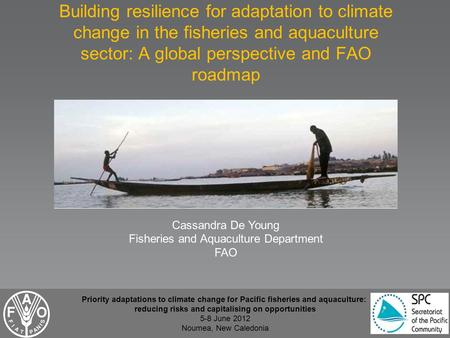 Building resilience for adaptation to climate change in the fisheries and aquaculture sector: A global perspective and FAO roadmap Cassandra De Young Fisheries.