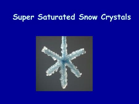 Super Saturated Snow Crystals. The Whole Enchilada!!!