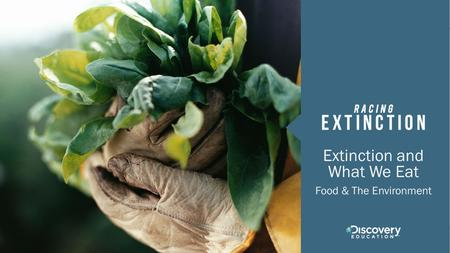 Extinction and What We Eat Food & The Environment.