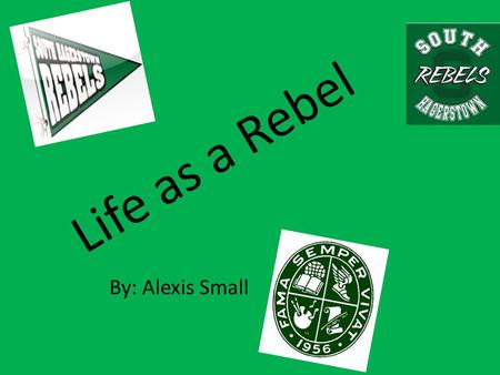 Life as a Rebel By: Alexis Small. Involvements I was in Link Crew for two years which was a leaders program helping incoming freshmen. I was also in Best.