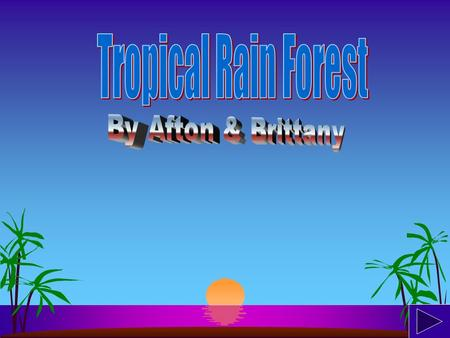 Rainforest are located mainly on islands of the south, like St.Lucia. Rainforests can also be found in other areas such as in parts of South America,