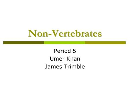 Non-Vertebrates Period 5 Umer Khan James Trimble.