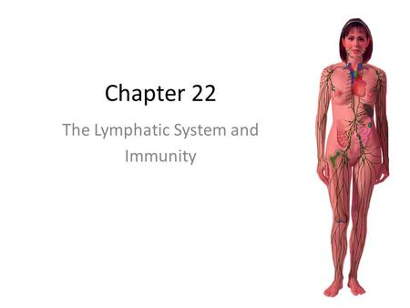 Chapter 22 The Lymphatic System and Immunity. The Lymphatic System A system consisting of lymphatic vessels through which a clear fluid (lymph) passes.