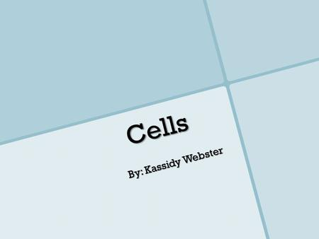 Cells By: Kassidy Webster. Animal Cell Plant Cell.