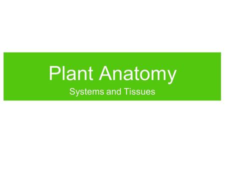 Plant Anatomy Systems and Tissues.