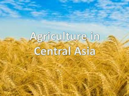 Central Asia: 60% of the population living in rural areas 45% for agriculture employment 25% of GDP on average In Kazakhstan: 8% of GDP on average 33%