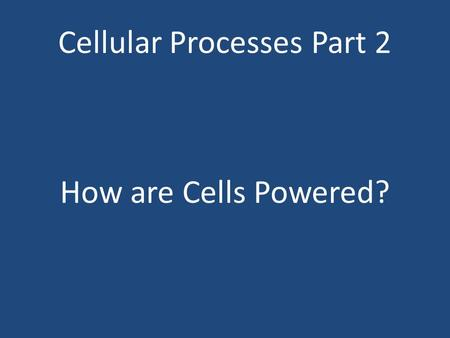 Cellular Processes Part 2 How are Cells Powered?