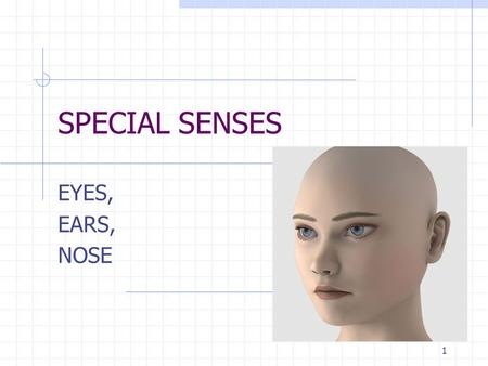SPECIAL SENSES EYES, EARS, NOSE 1. The Eyes have it!: Lacrimal glands..produce tears to moisten and cleanse the eye Conjunctiva..mucous membrane that.