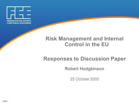 Slide 1 Risk Management and Internal Control in the EU Responses to Discussion Paper Robert Hodgkinson 25 October 2005.