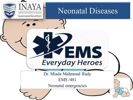 Dr. Miada Mahmoud Rady EMS /481 Neonatal emergencies