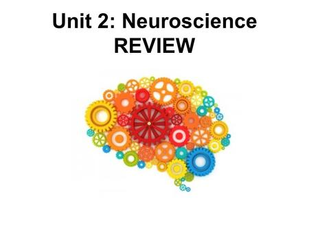 Unit 2: Neuroscience REVIEW. Neural Communication  Neuron  a nerve cell  the basic building block of the nervous system  Soma  cell body – organelles.