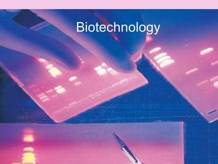 Biotechnology. selective breeding when the plants/animals from the existing stock that have the characteristics they want are selected and are allowed.