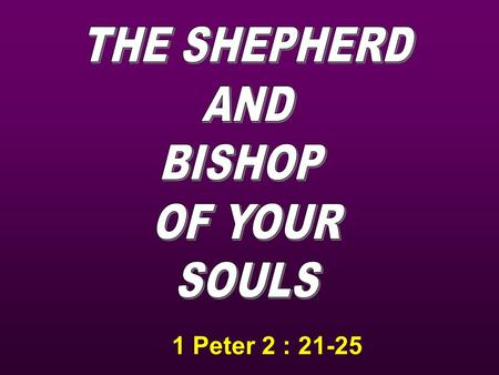 1 Peter 2 : 21-25. He is the Good Shepherd He is the Great Shepherd He is the Chief Shepherd.