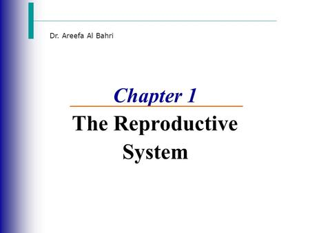 Dr. Areefa Al Bahri Chapter 1 The Reproductive System.