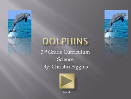 3 rd Grade Curriculum Science By: Christin Figgins Next.