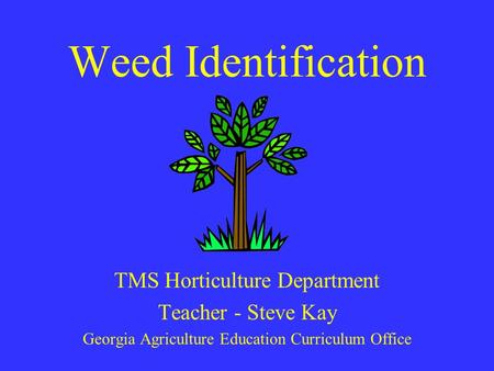 Weed Identification TMS Horticulture Department Teacher - Steve Kay Georgia Agriculture Education Curriculum Office.