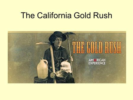 "The California Gold Rush. These early gold seekers called ""49ers"" traveled to California by sailing ships and covered wagons across the continent."