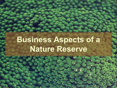 Business Aspects of a Nature Reserve. What is Nature Conservation.