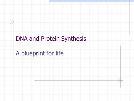 DNA and Protein Synthesis A blueprint for life. Protein Synthesis is divided into 2 parts in Eukaryotes:Transcription and Translation Transcription is.